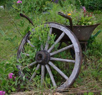 Aranżacja małego ogródka przydomowego
