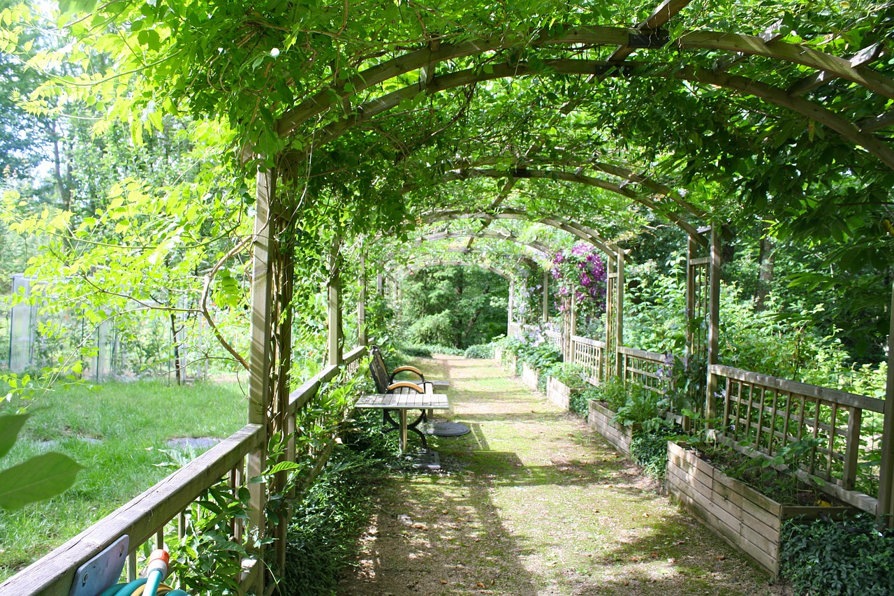 Pergola w ogrodzie