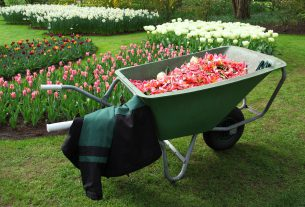 przydatne narzędzia ogrodnicze