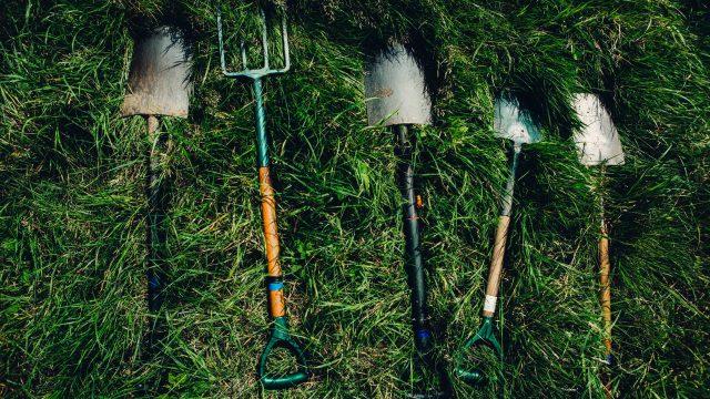 Zakładasz trawnik Sprawdź, o czym nie możesz zapomnieć